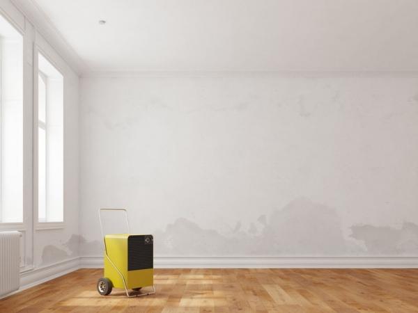 How To Know When You Should Call A Professional For Water Damage